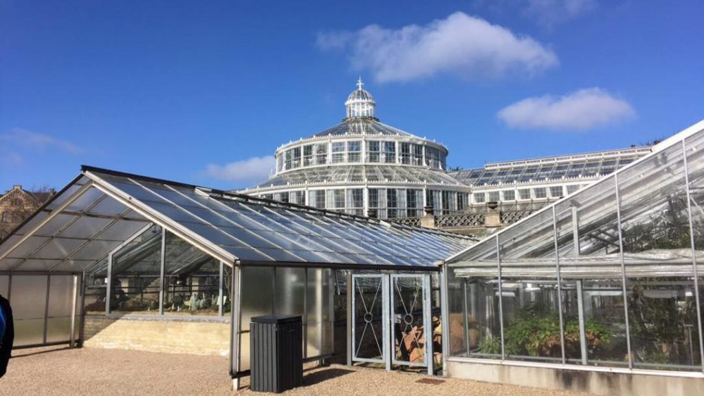 que faire à Copenhague- jardin botanique