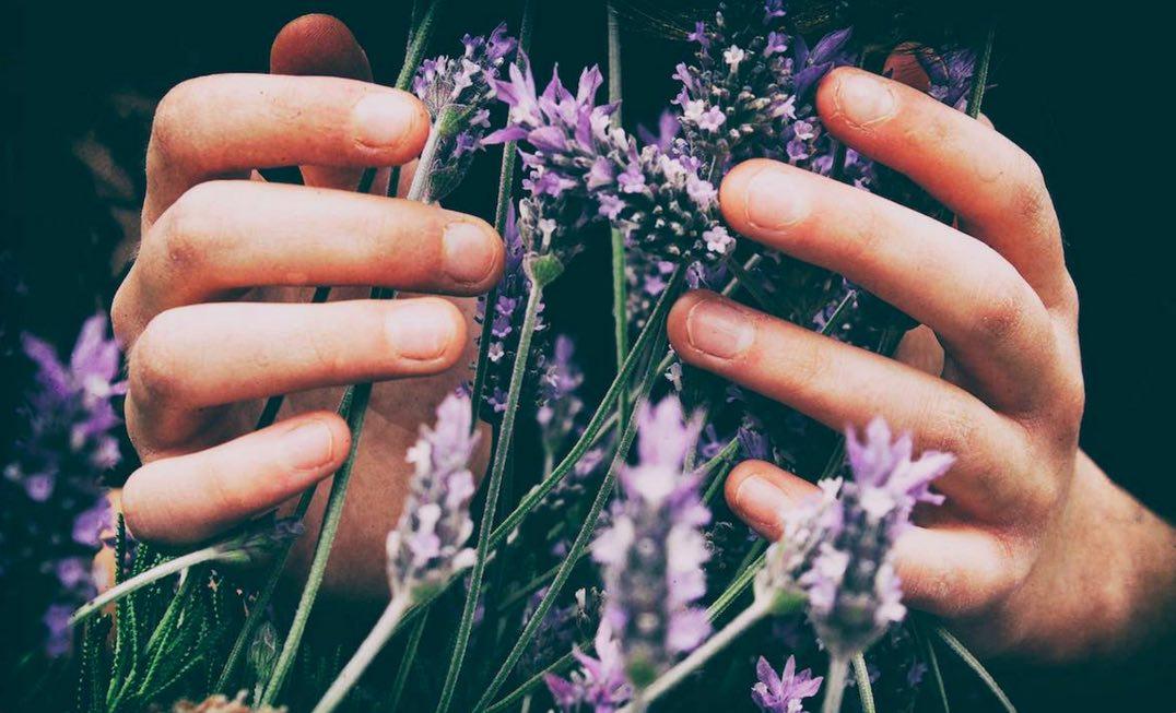 6 idées pour parfumer naturellement son intérieur