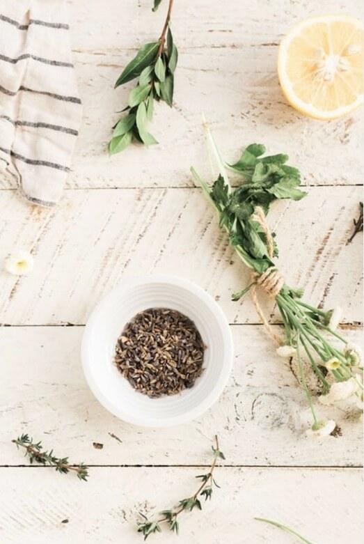 les-bienfaits-des-plantes-complements-alimentaires-bio